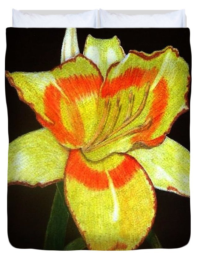 Daylily Duvet Cover featuring the drawing Orange Glow by Anita Putman