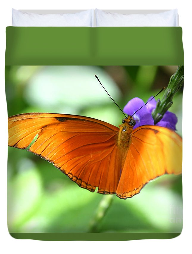 Alyce Taylor Duvet Cover featuring the photograph Orange Julia Butterfly by Alyce Taylor