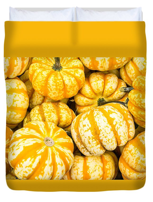 Agriculture Duvet Cover featuring the photograph Orange Winter Squash On Display by John Trax