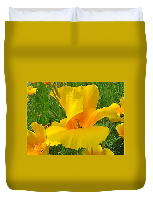 Yellow Duvet Cover featuring the photograph Orange Yellow Poppy Flower Art Print by Baslee Troutman
