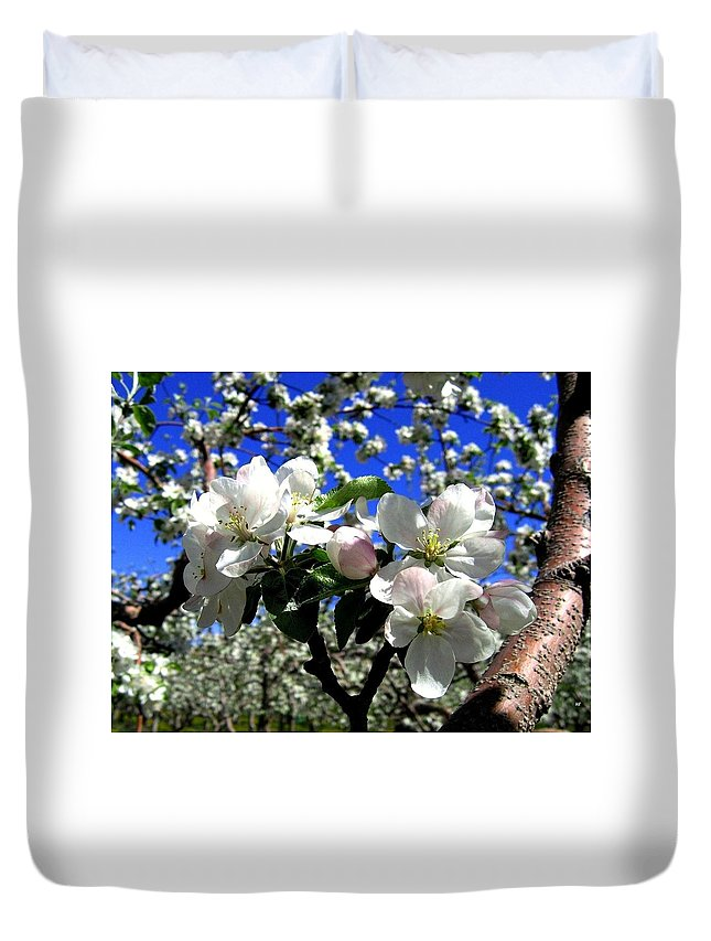 Apple Blossoms Duvet Cover featuring the photograph Orchard Ovation by Will Borden