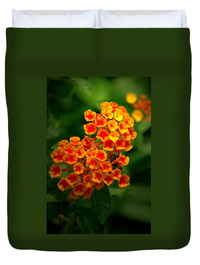 Flower Duvet Cover featuring the photograph Orchestra by David Weeks