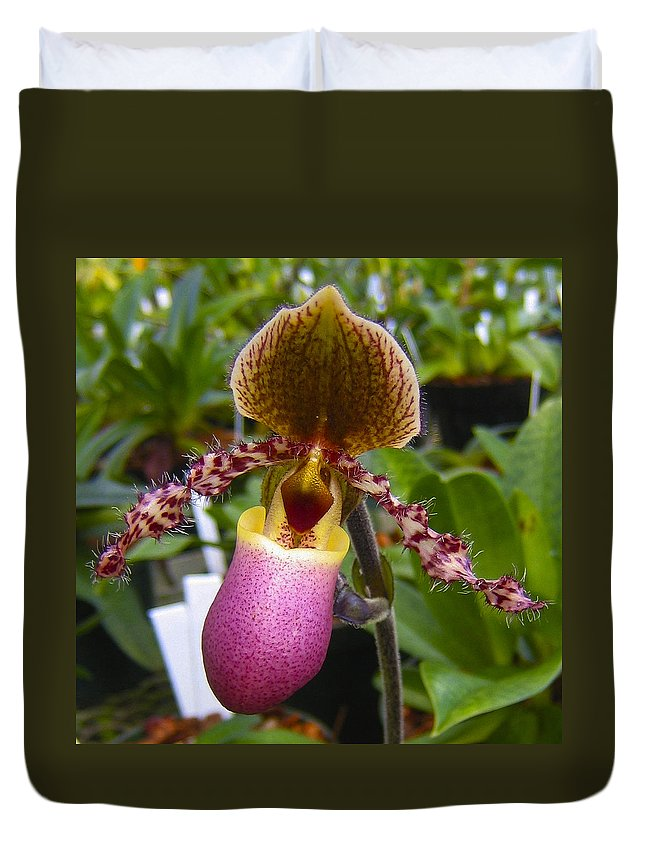 Orchid Duvet Cover featuring the photograph Orchid 31 by Ingrid Smith-Johnsen