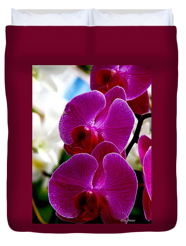 Art For The Wall...patzer Photography Duvet Cover featuring the photograph Orchid by Greg Patzer