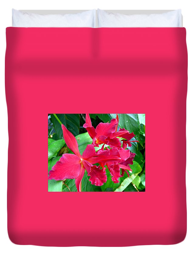 Orchid Duvet Cover featuring the photograph Orchid Series 3 by Katy Hawk