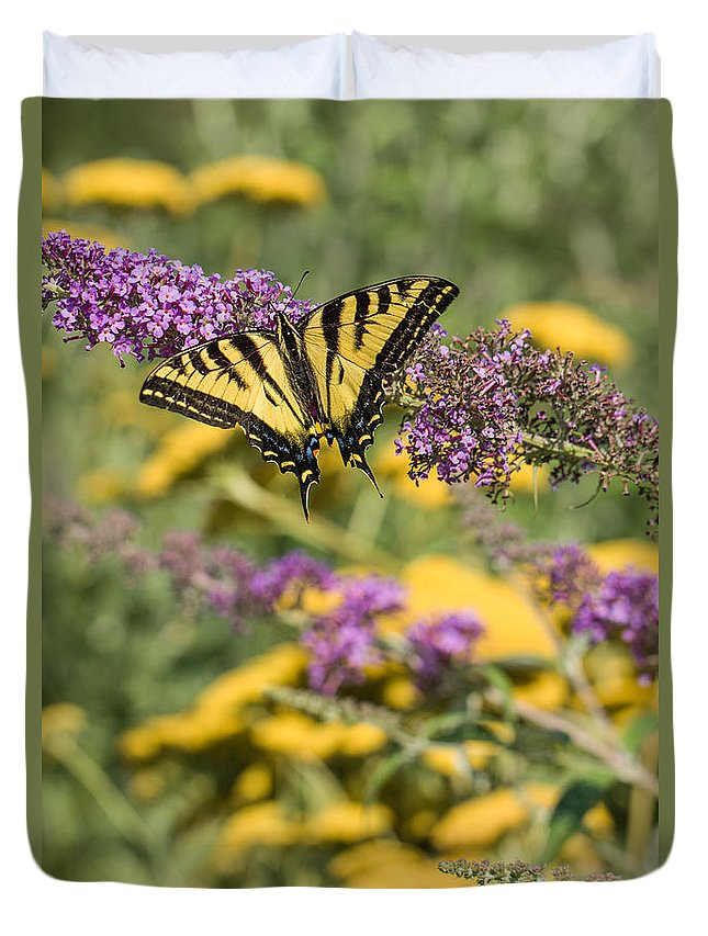 2014 Duvet Cover featuring the photograph Oregon Swallowtail In The Garden by Karen Forsyth