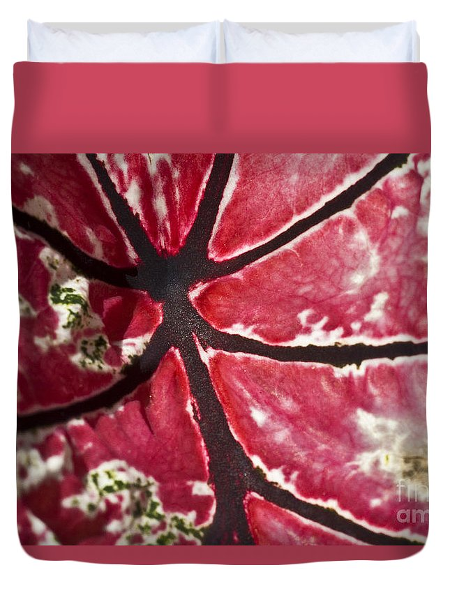 Heiko Duvet Cover featuring the photograph Ornamental Leaf by Heiko Koehrer-Wagner