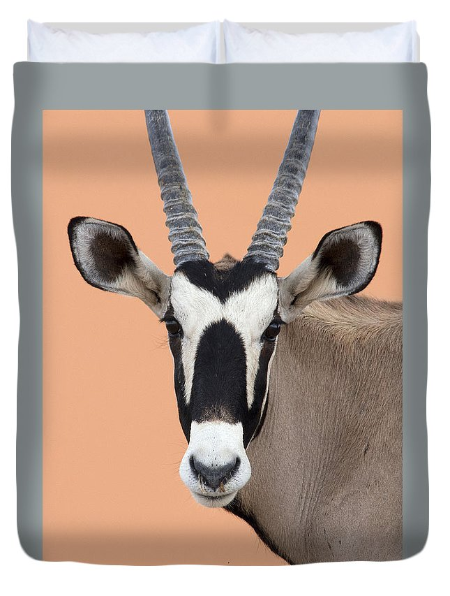 Nis Duvet Cover featuring the photograph Oryx Portrait Namibia by Alexander Koenders