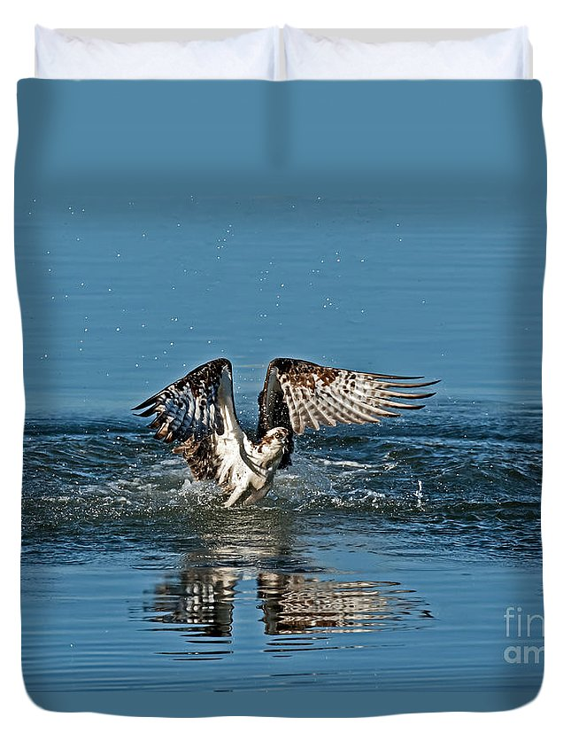 Animal Duvet Cover featuring the photograph Osprey Getting Out Of The Water by Anthony Mercieca
