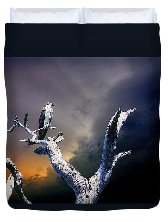 Osprey Duvet Cover featuring the photograph Osprey by Mal Bray