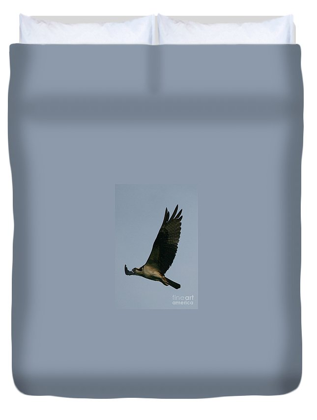 Osprey Art Duvet Cover featuring the photograph Osprey Reach by Neal Eslinger