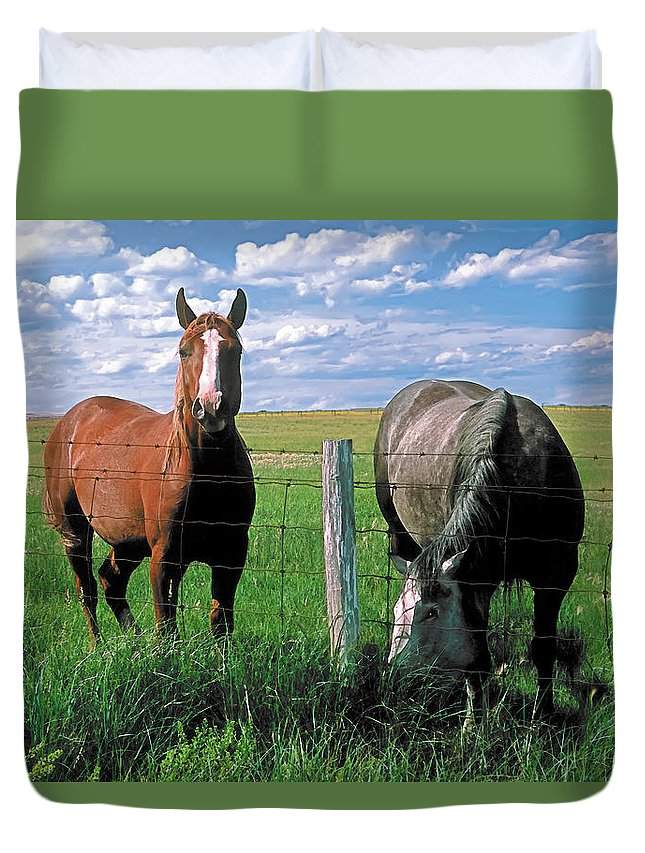 Scenic Duvet Cover featuring the painting Other Side Of The Fence by Terry Reynoldson