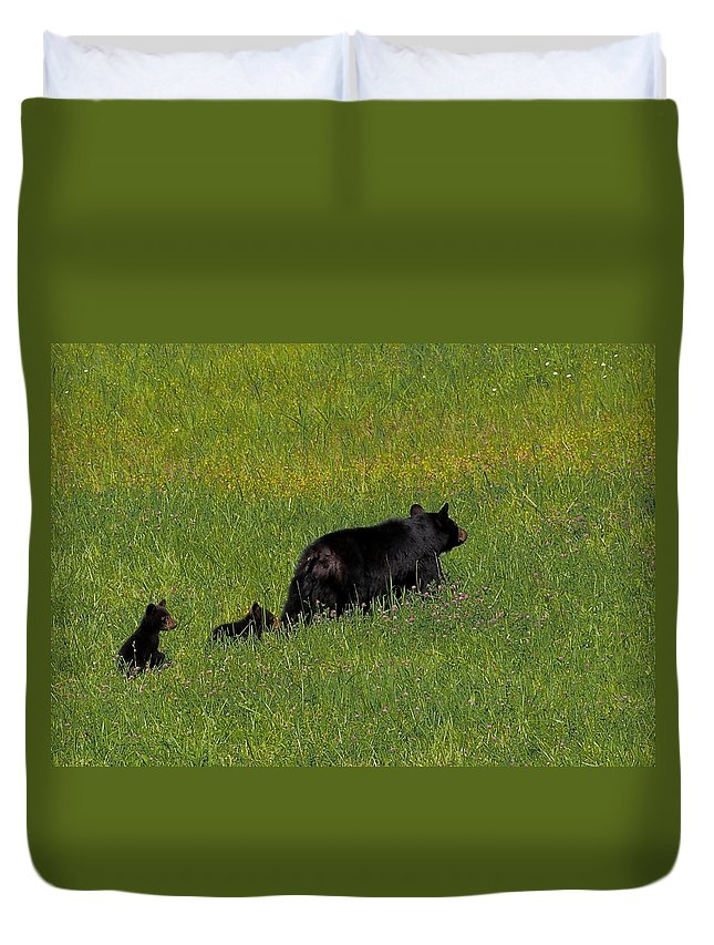 Don Keisling Duvet Cover featuring the photograph Out For A Walk by Don Keisling