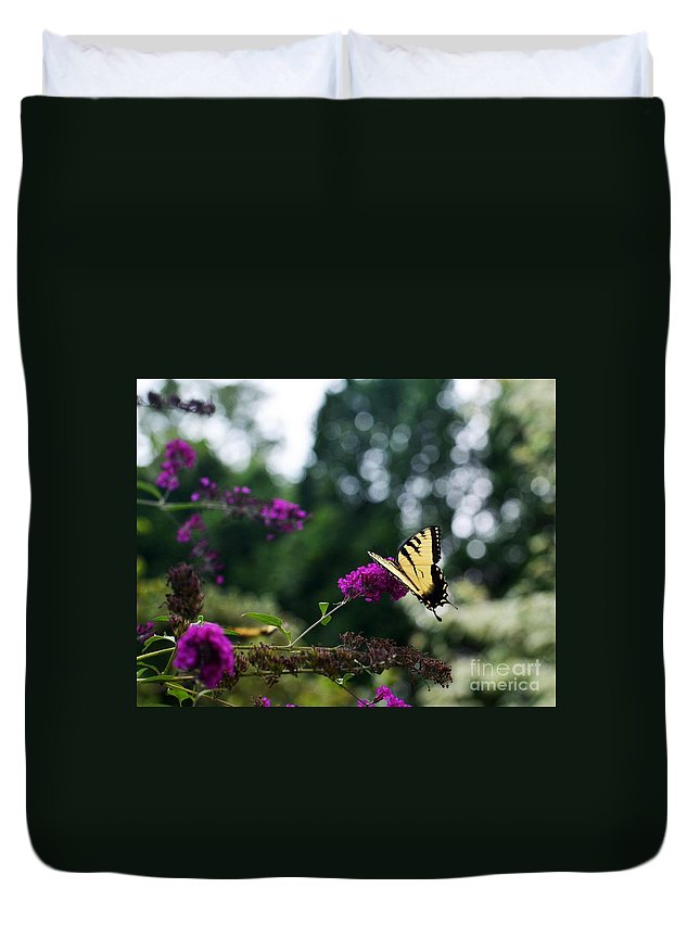 Butterfly Duvet Cover featuring the photograph Out Of Bounds 3 by Judy Wolinsky