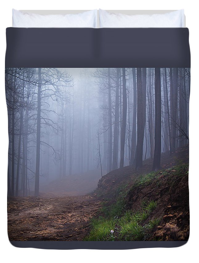 Fog Duvet Cover featuring the photograph Out Of The Mist - Casper Mountain - Casper Wyoming by Diane Mintle
