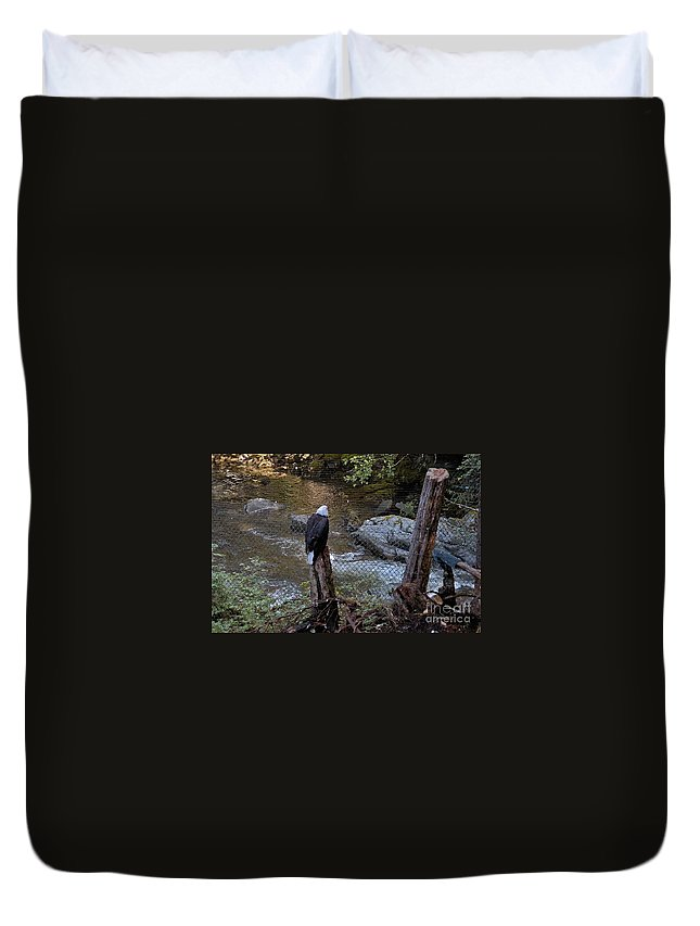 Alaska Duvet Cover featuring the photograph Outlook by Joseph Yarbrough