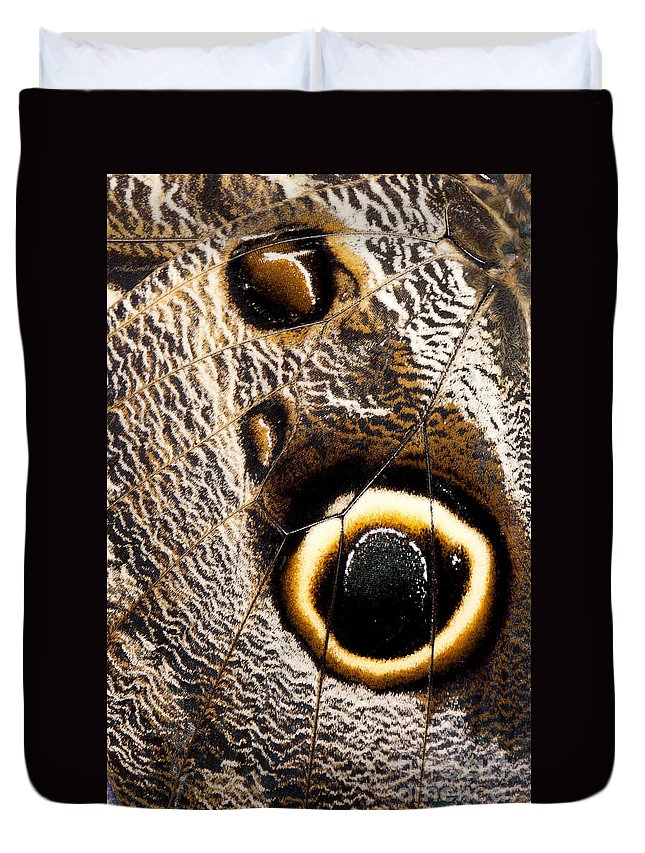 Closeup Duvet Cover featuring the photograph Owl Butterfly Wing by Anthony Totah
