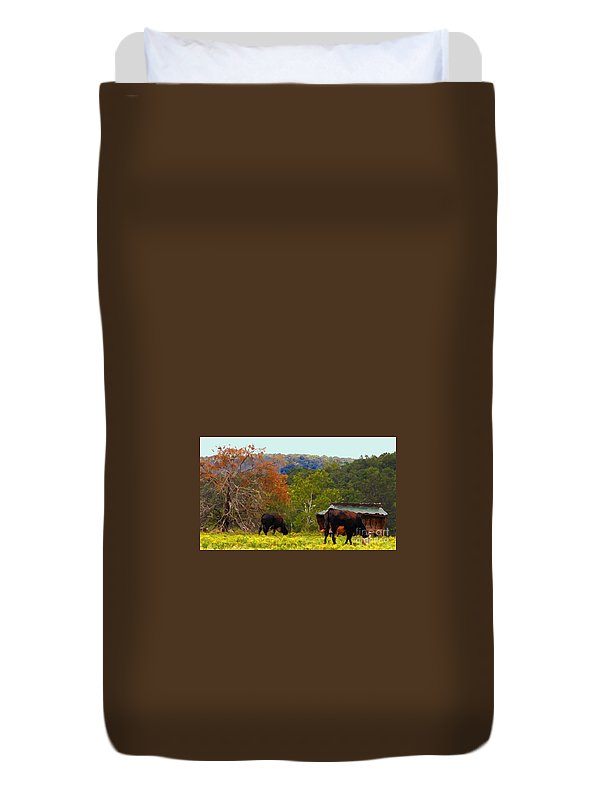 Cows Duvet Cover featuring the photograph Ozark Cows by Lydia Holly