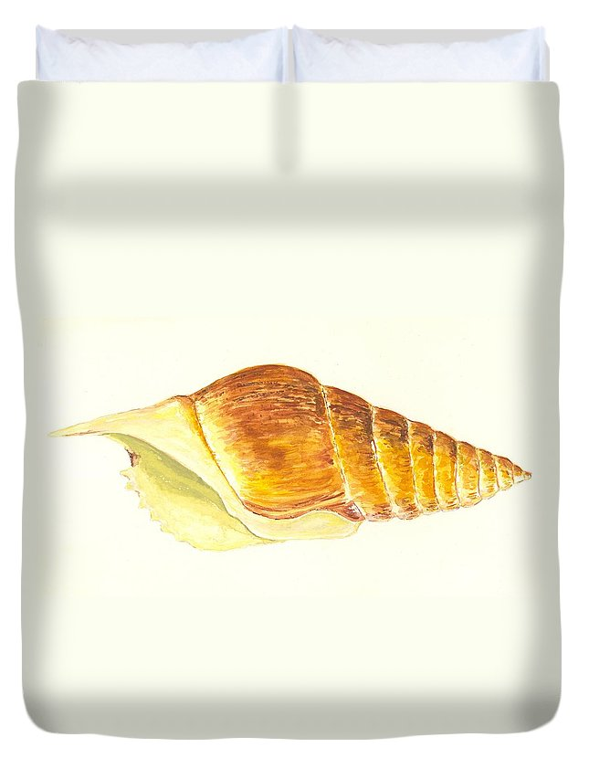 Sea Duvet Cover featuring the painting Pacific Triton Sea Shell by Michael Vigliotti