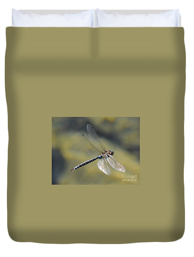 Wildlife Duvet Cover featuring the photograph Paddletail Darner In Flight by Vivian Christopher