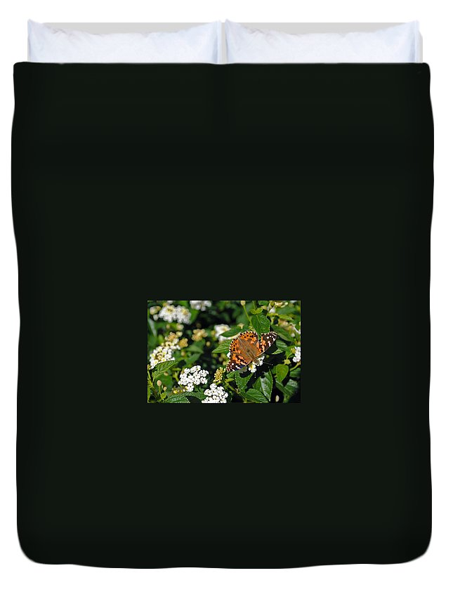 Nature Duvet Cover featuring the photograph Painted Lady by Skip Willits