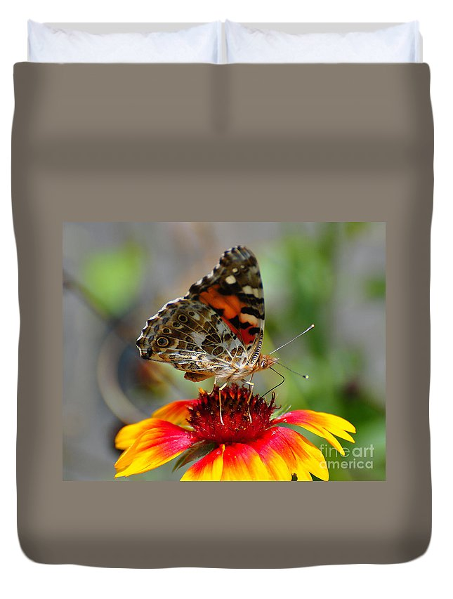 Butterfly Duvet Cover featuring the photograph Painted Lady by Todd Hostetter