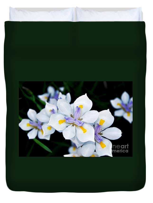 Photography Duvet Cover featuring the photograph Painted Petals by Kaye Menner