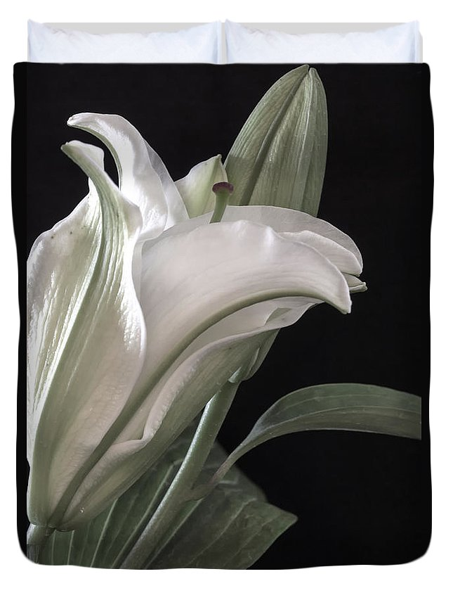 Botanicals Duvet Cover featuring the photograph Pale Lily by Linda Dunn