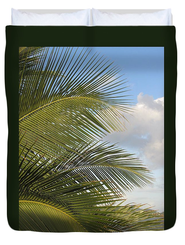 Beach Duvet Cover featuring the photograph Palm Close Up 3 by Anita Burgermeister