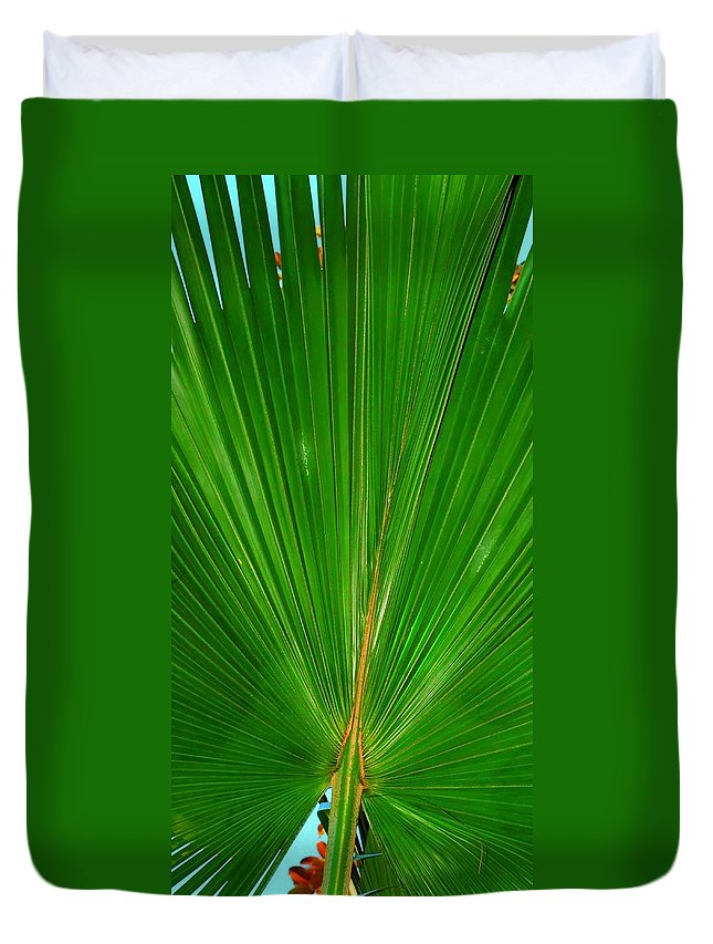 Palm Duvet Cover featuring the photograph Palm Closeup by Linda Covino