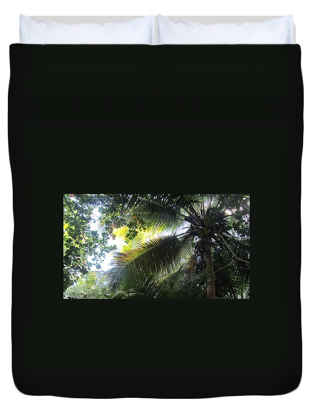 Palm Tree Duvet Cover featuring the photograph Palm Pattern 1 by Anita Burgermeister