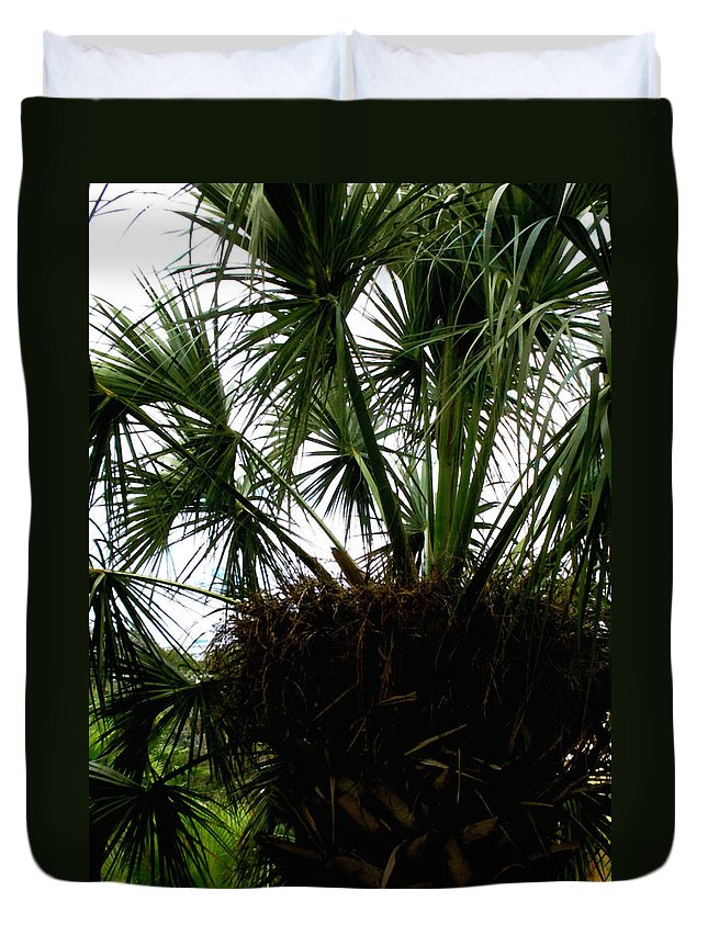 Tree Duvet Cover featuring the photograph Palm Tree In Curacao by Glenn Aker