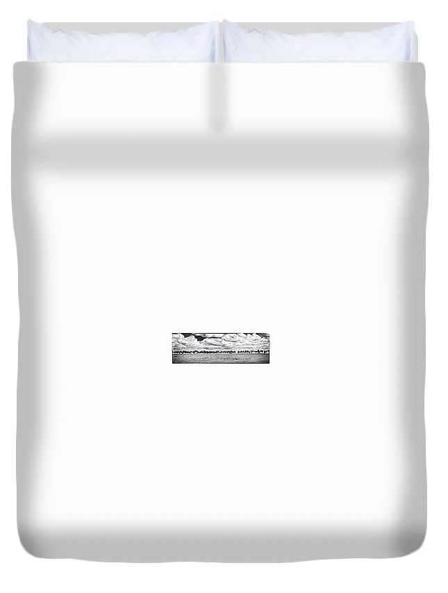 Trees Duvet Cover featuring the photograph Panoramic Noir by Bruce Bain