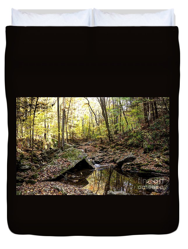 Hdr Duvet Cover featuring the photograph Panther Branch In Fall by Paul Mashburn