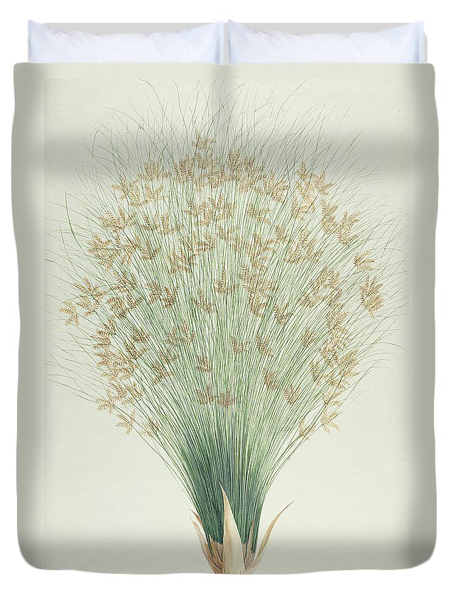 Papyrus Duvet Cover featuring the painting Papyrus by James Bruce