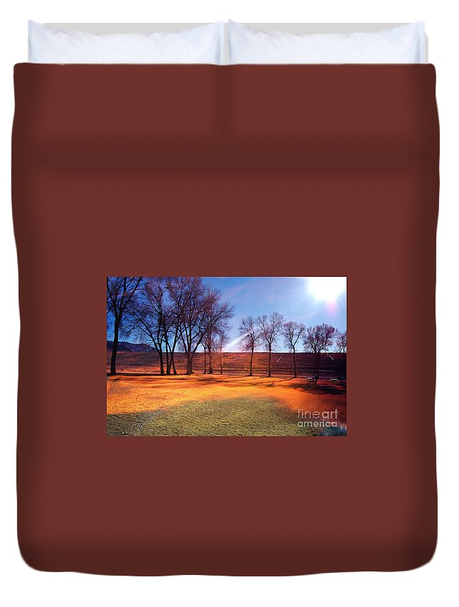 Background Duvet Cover featuring the photograph Park In Mcgill Near Ely Nv In The Evening Hours by Gunter Nezhoda
