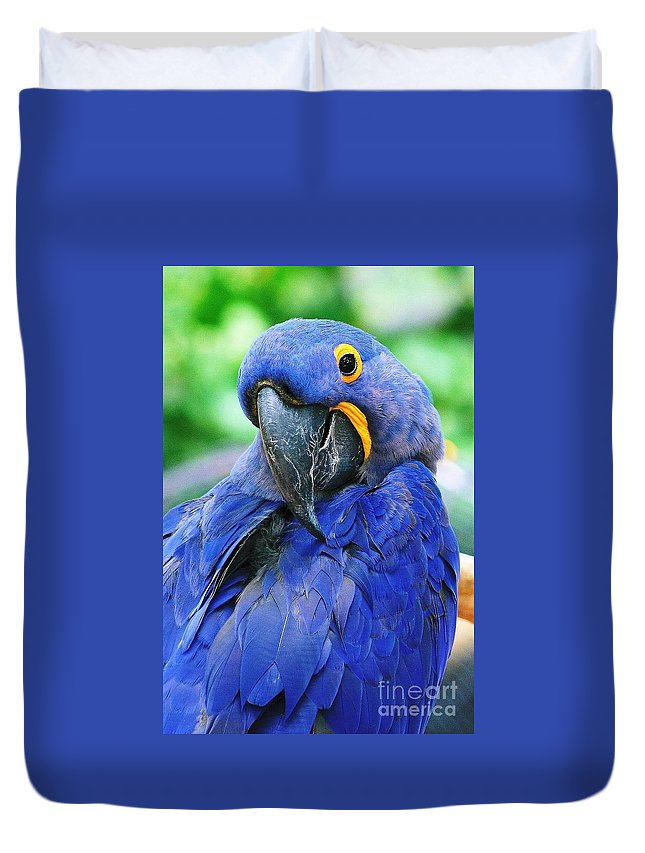 Birds Duvet Cover featuring the photograph Parrot by Gayle Miller