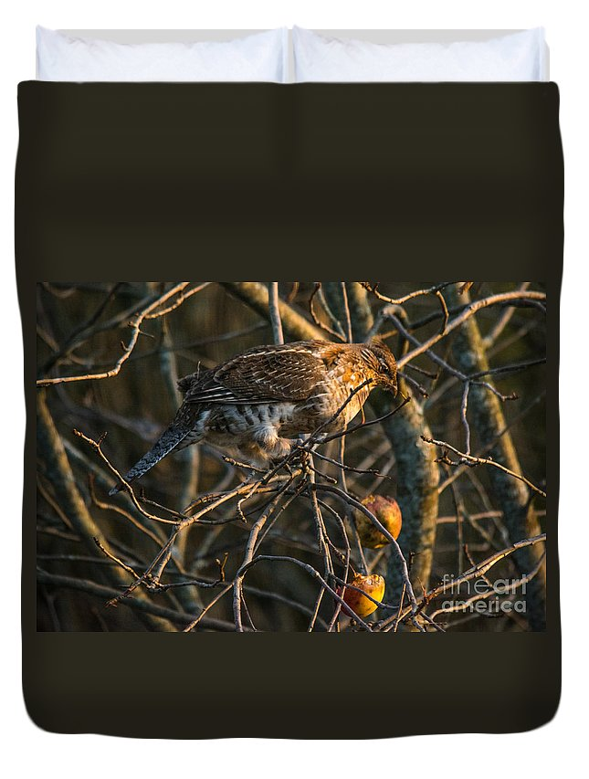 Duvet Cover featuring the photograph Partridge In An Apple Tree by Cheryl Baxter