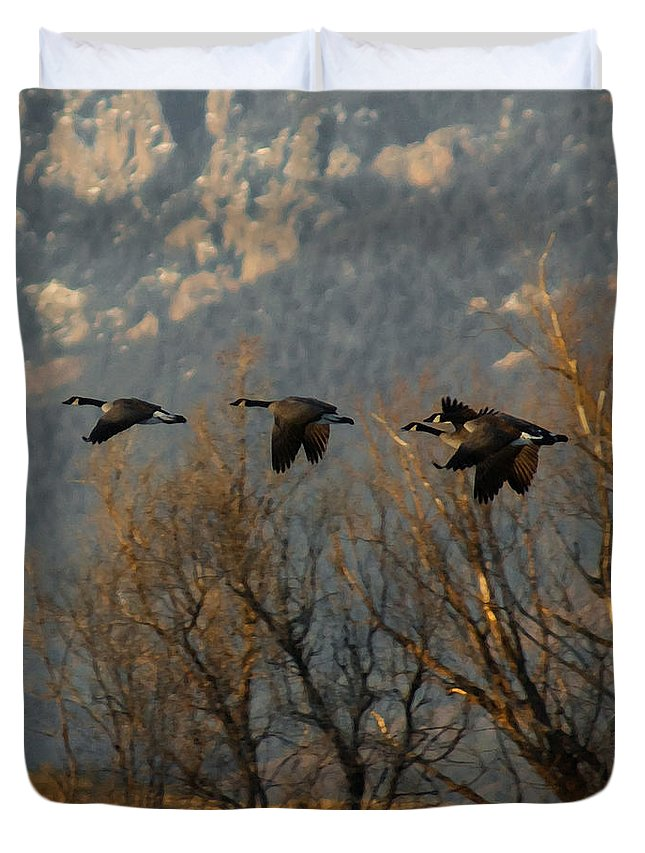 Birds Duvet Cover featuring the digital art Passing Through by Ernie Echols