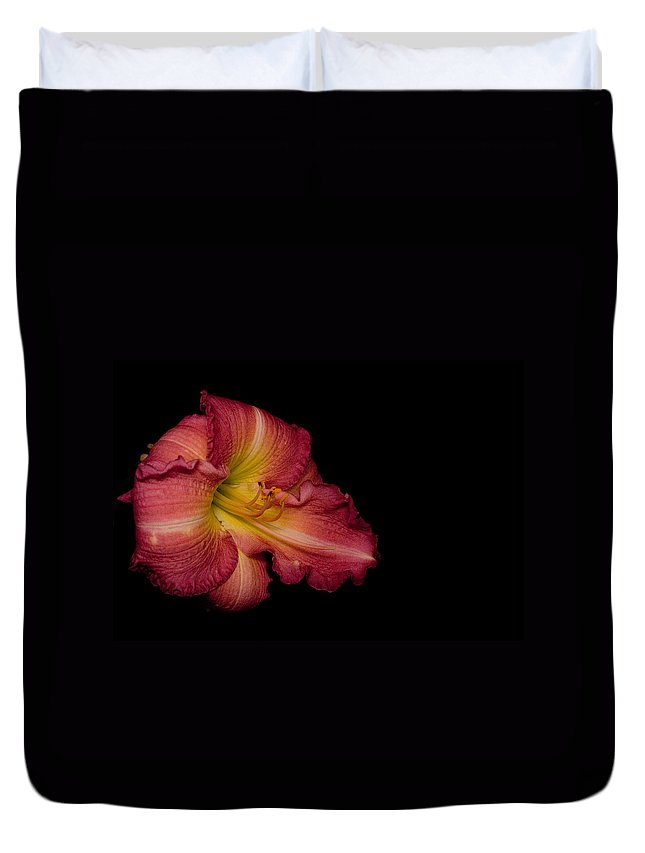Passionate Duvet Cover featuring the photograph Passionate Lily 20 by Douglas Barnett
