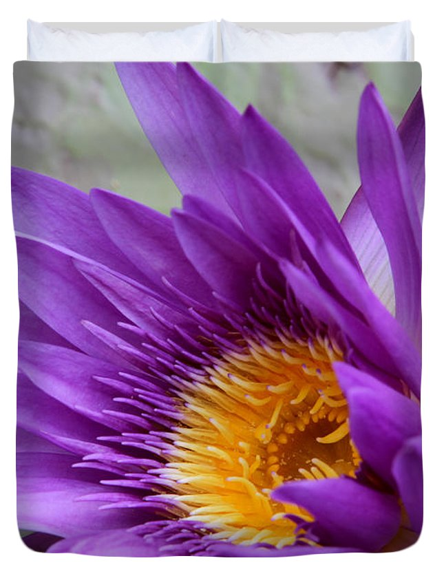 Landscape Duvet Cover featuring the photograph Passionate Purple Water Lily by Sabrina L Ryan