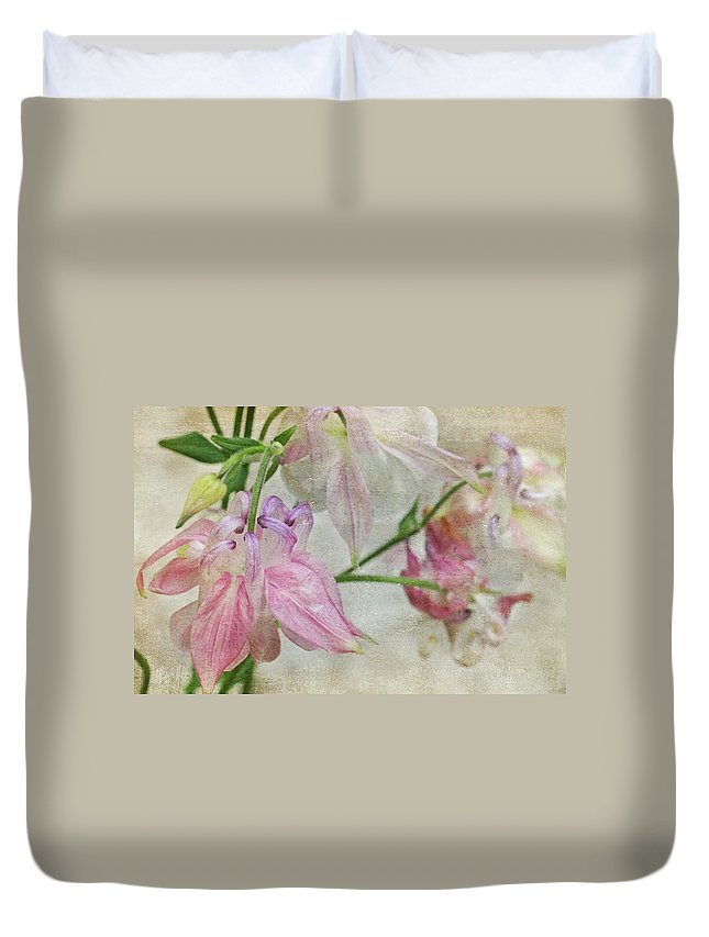 Columbines Duvet Cover featuring the photograph Pastel Columbines by Peggy Collins