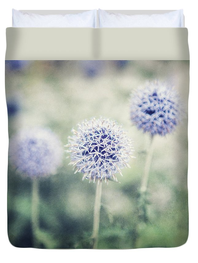 Purple Duvet Cover featuring the photograph Pastel Purple Allium Bulbs by Lisa Russo
