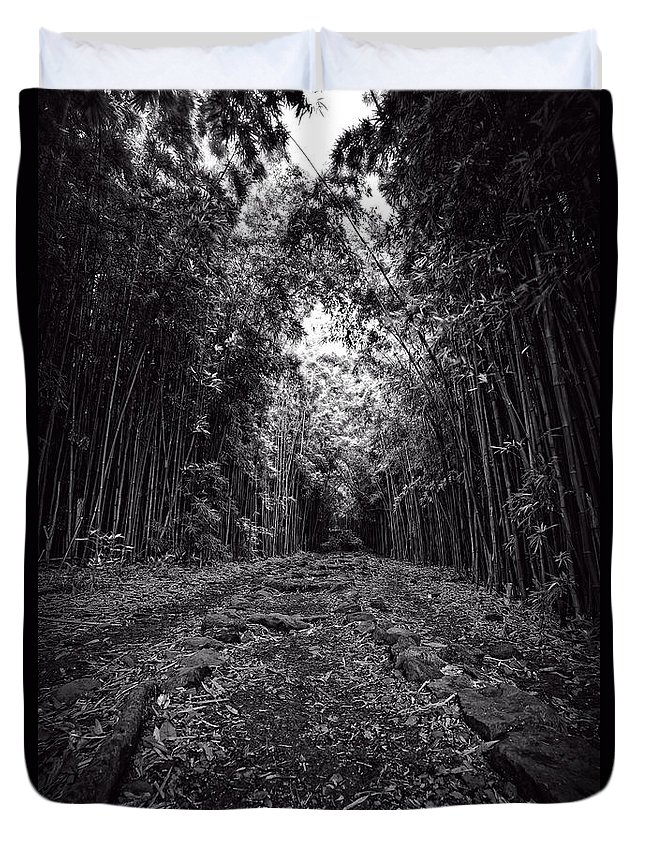 Hawaii Duvet Cover featuring the photograph Pathway Through A Bamboo Forest Maui Hawaii by Edward Fielding