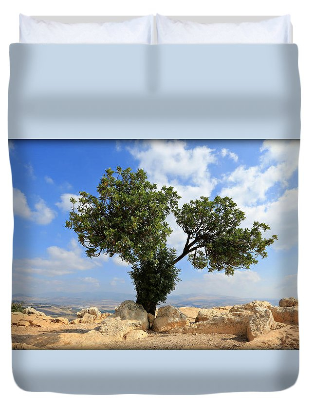 Arbel Duvet Cover featuring the photograph Peace Tree by Stephen Stookey