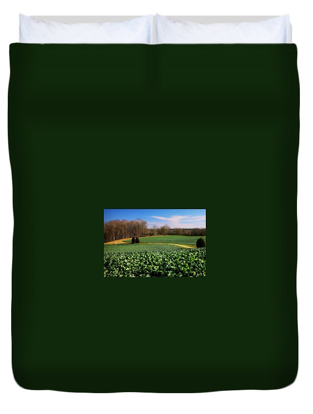 Canola Duvet Cover featuring the photograph Peaceful by Reid Callaway