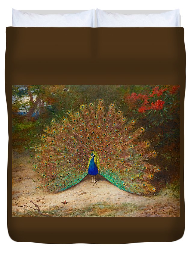 Bird Duvet Cover featuring the painting Peacock Butterfly by Archibald Thorburn
