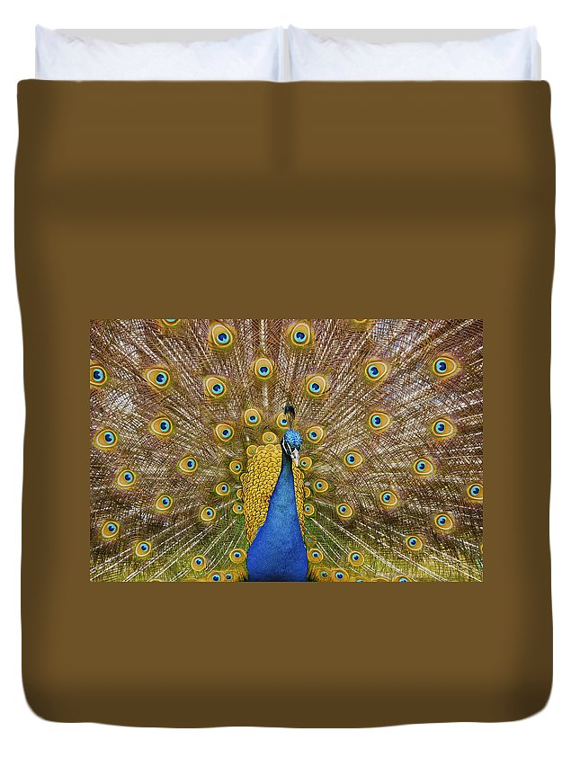 Peacock Duvet Cover featuring the photograph Peacock Courting by Charles Beeler