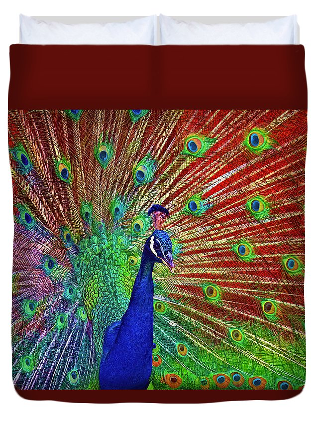 Peacock Duvet Cover featuring the photograph Peacock In Front Of Red Barn by Jerry Gammon