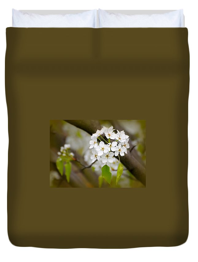 Flowers Duvet Cover featuring the photograph Pear Blossoms by Diana Angstadt